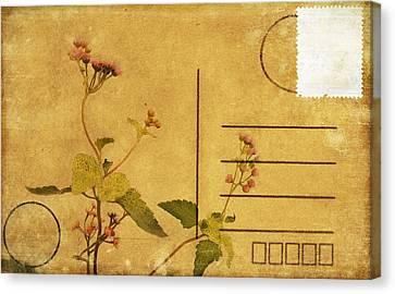 Floral Pattern On Postcard Canvas Print by Setsiri Silapasuwanchai