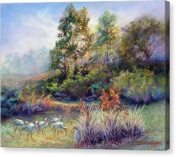 Florida Ibis Landscape Canvas Print by Denise Horne-Kaplan