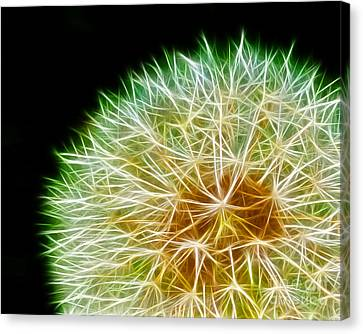 Flower - Forbidden Planet - Abstract Canvas Print by Paul Ward