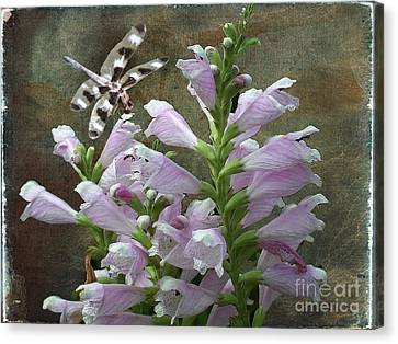 Flower And Dragonfly Canvas Print by Jim Wright