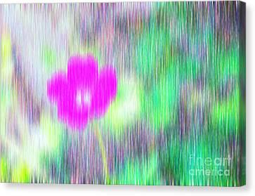 Flower In The Rain Canvas Print by Silvia Ganora