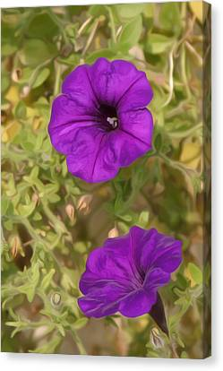 Flower Painting 0006 Canvas Print by Metro DC Photography