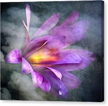 Flower Spirit Canvas Print by Svetlana Sewell