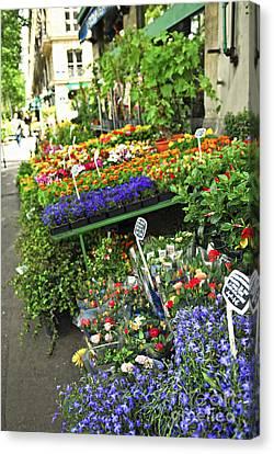 Flower Stand In Paris Canvas Print by Elena Elisseeva