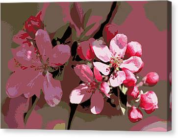 Flowering Crabapple Posterized Canvas Print by Mark J Seefeldt