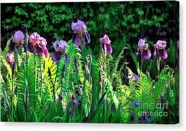 Flowering Purple Irises - Fine Art Photography Canvas Print by Renata Ratajczyk