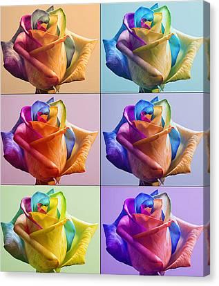 Flowers Canvas Print by Yosi Cupano