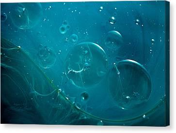 Fluidism Aspect 43 Photography Canvas Print by Robert Kernodle