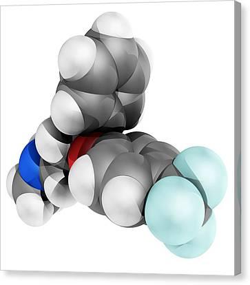 Fluoxetine Antidepressant Drug Molecule Canvas Print by Laguna Design