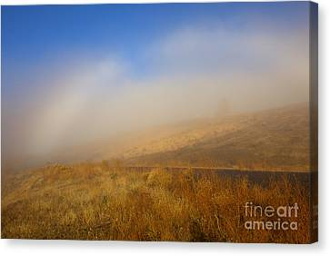 Fog Bow At Lookout Point Canvas Print by Mike  Dawson