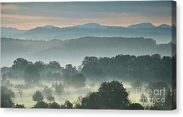 Fogy Day Canvas Print by Bruno Santoro