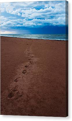 Foot Prints To The Sea Canvas Print by Matt Dobson