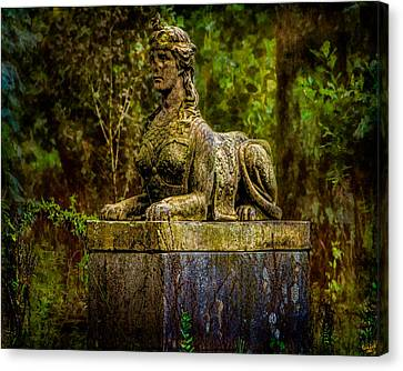 Forest Mysteries Canvas Print by Chris Lord