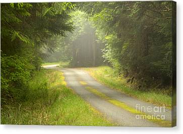 Forest Portal Canvas Print by Idaho Scenic Images Linda Lantzy