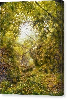 Forest Ravine Canvas Print by Dale Jackson