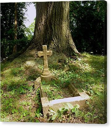 Forgotten Grave Canvas Print by Felix Concepcion
