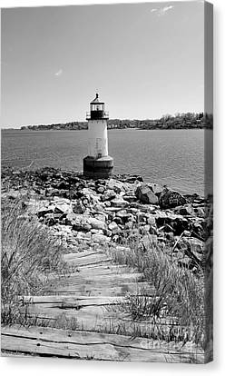 Fort Pickering Light Canvas Print by Catherine Reusch  Daley