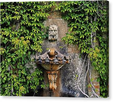 Fountain In The Walled Garden, Florence Canvas Print by The Irish Image Collection