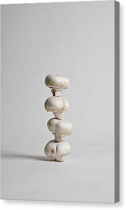 Four Mushrooms Arranged In A Stack, Studio Shot Canvas Print by Halfdark