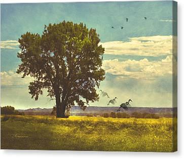 Four Seasons Summer Heat Canvas Print by Georgiana Romanovna