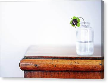 Fourleaf Cloverin Vase On Dresser Canvas Print by Elisabeth Schmitt