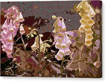 Foxglove Canvas Print by Renata Ferenc