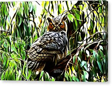 Fractal-s -great Horned Owl - 4336 Canvas Print by James Ahn
