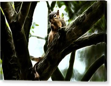 Fractal - Thumb Sucker - Robbie The Squirrel - 8574 Canvas Print by James Ahn