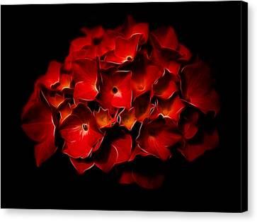 Fractalius Red Hydrangea Canvas Print by Jay Lethbridge