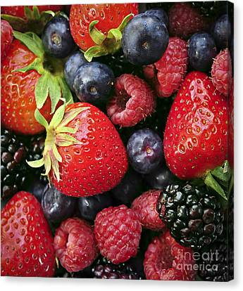 Fresh Berries Canvas Print by Elena Elisseeva