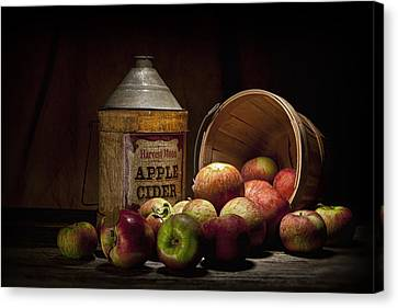 Fresh From The Orchard II Canvas Print by Tom Mc Nemar