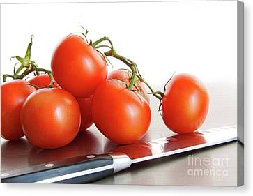 Fresh Ripe Tomatoes On Stainless Steel Counter Canvas Print by Sandra Cunningham
