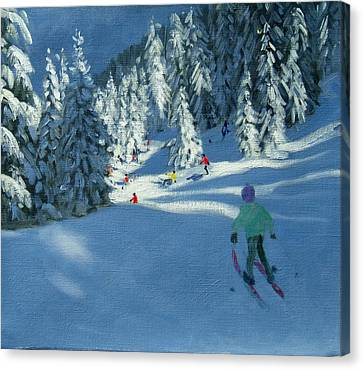 Fresh Snow Canvas Print by Andrew Macara