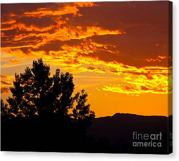 Friday Night Lights Canvas Print by Dana Kern