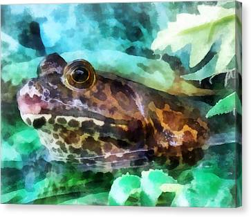 Frog Ready To Be Kissed Canvas Print by Susan Savad