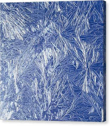 Frost Canvas Print by Siede Preis