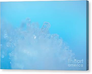Frozen On The Blue Planet Canvas Print by Moxie Nox