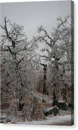Frozen Over Canvas Print by Jessica Jandayan