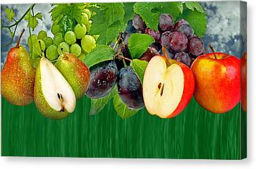 Fruits Canvas Print by Manfred Lutzius