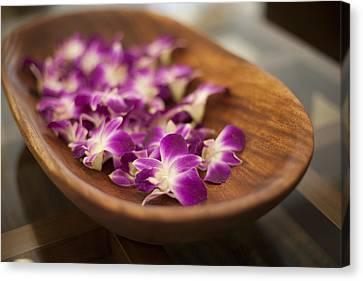 Fuchsia Hawaiian Flowers In A Bowl Canvas Print by Noel Hendrickson