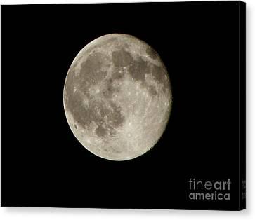 Full Moon  Canvas Print by Pixel  Chimp