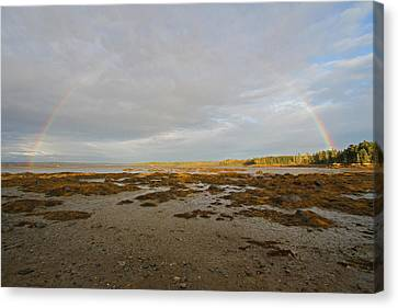 Full Rainbow Arc Over Acadia Np Canvas Print by Juergen Roth