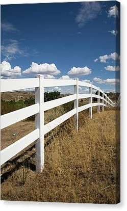 Galloping Fence Canvas Print by Peter Tellone