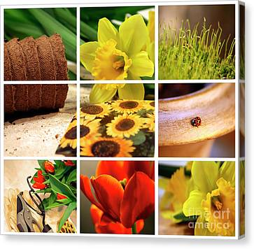 Garden Collage Canvas Print by Sandra Cunningham