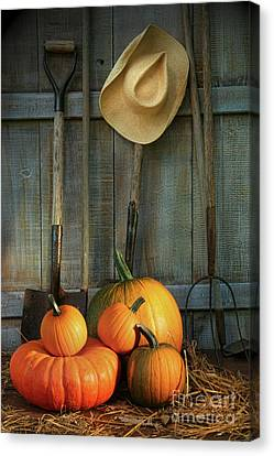 Garden Tools In Shed With Pumpkins Canvas Print by Sandra Cunningham