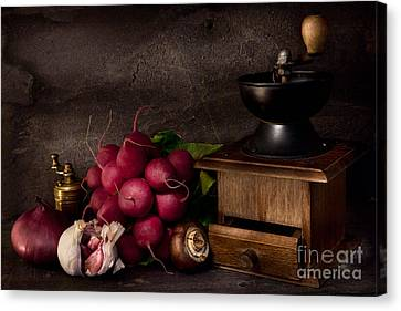 Garlic And Radishes Canvas Print by Ann Garrett