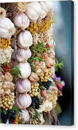 Garlic On Ecological Market Canvas Print by Maciej Frolow