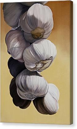 Garlic Still Life Canvas Print by Matthew Bates