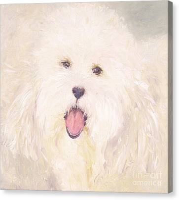 Georgie Canvas Print by Barbara Anna Knauf