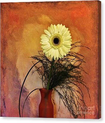 Gerber Daisy Still Life Canvas Print by Marsha Heiken